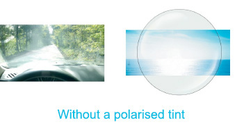 Polarised Lenses
